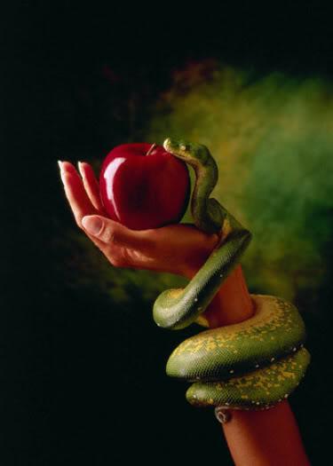serpente-1